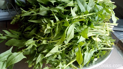 life in skardu spinach