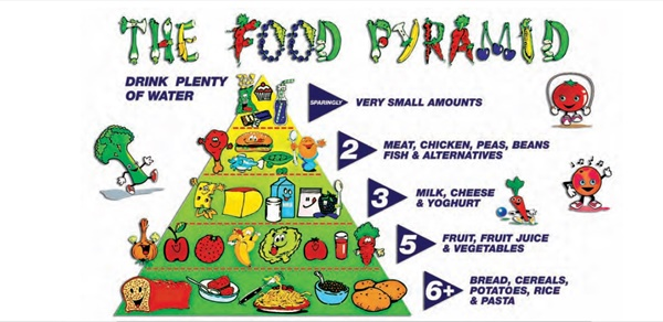 Keep All Food Groups In Your Kids Lunch Box Fruit And Veggies Starchy Food Protein And Dairy Guide Your Kids Regarding Importance Of Food Groups And